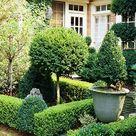 Boxwood Garden