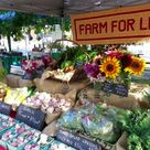 Farmers Market Stands