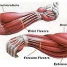 Iron Palm Training: The Importance of Both Power Development and Physical Conditioning