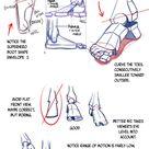 Building the Human Foot by Nova-MadArt on DeviantArt