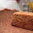 Spaghetti-Stuffed Meatloaf
