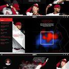 Anatomy of a Pitch