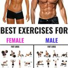 The 25 Best Exercises for Men and Women To Build Muscle   GymGuider.com