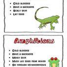 Mammals, Reptiles, Fish, OH MY!