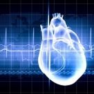 The Quick and Dirty Guide to Cardiology II: Coronary Circulation - MedicTests.com