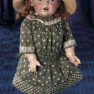 Magnifique! Family Dolls of Mildred Seeley:                       240  German Bisque