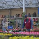 Lowe's Spring Black Friday Sale - Spring: Mulch Ad Commercial on TV  2019
