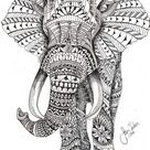 Adult Coloring - Elephant