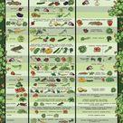 Vegetable Garden Layout 7 Best Design Secrets