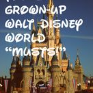 Disney World Information