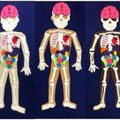 Human body felt puzzle set with 3 skin tones childrens | Etsy
