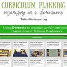 Organizing in Four Dimensions - Trillium Montessori