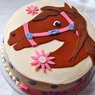 Giddy Up Cake