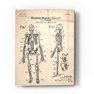 Epic Art 'Anatomical Skeleton Blueprint Patent Parchment' Acrylic Glass Wall Art - 12x16
