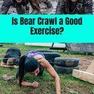Top Bear Crawl Benefits