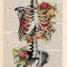 Medstudent's diaries — mednerds: Medical Art by Cocomilla
