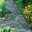 Plants for Pathways - FineGardening