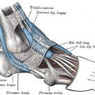 Fußschmerzen und Fersenschmerzen: Was kann ich tun?