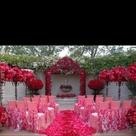 Hot Pink Weddings