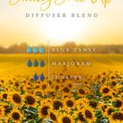 Blue Tansy Oil Uses & Benefits | Young Living Blog