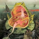 Incredibly Elaborate Illustrations by Victo Ngai