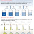 Infographic—Lab Basics How to Perform Serial Dilutions