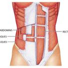 Healing Abdominal Muscles After Pregnancy   Midwifery Traditions