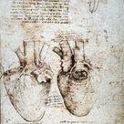 Box Canvas Print. Studies of an ox heart by Leonardo da Vinci,