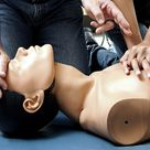 CPR, AED, and First Aid Certification from National Health Care Provider Solutions (55% Off)
