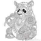 Zentangle Stilisierte Panda Vektor Abbildung   Illustration von abdeckung, tier 68288239
