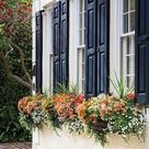 Window Flower Boxes