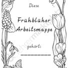 Grundschulfrosch   Autorenprofil bei eduki.com
