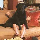 Sit By Suzi Lonergan.