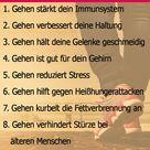 Abnehmen durch Gehen   in 6 Schritten zum Gewichtsverlust