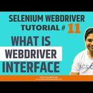 Selenium WebDriver Tutorial 11   Understand WebDriver Interface