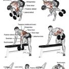7 Must-Do Exercises To Get Wide Back - GymGuider.com