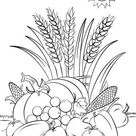 Fall Harvest coloring page   Free Printable Coloring Pages
