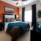 Orange Accent Walls