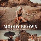 Free Moody Brown Lightroom Mobile Preset   Free Lightroom Preset