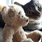 LifeIs-A-FerrisWheel Pinterest Account