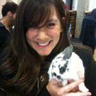 Jacqueline Bourcy Pinterest Account