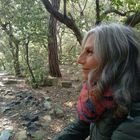 Brenda Burki Pinterest Account