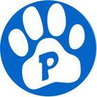 Petsagram Pinterest Account