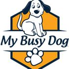 My Busy Dog Pinterest Account