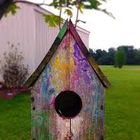 Custom Birdhouse Kits Pinterest Account