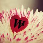 Wasem Habash instagram Account