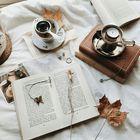 aksmahiqbal Pinterest Account