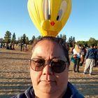 Cathy Webb Pinterest Account