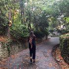 Lara Arbağ Pinterest Account
