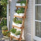Garden Design Pinterest Account